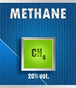 Gasco 135N-20: Methane (CH4) 20% vol. Calibration Gas