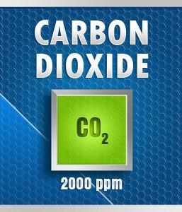 Gasco Bump Test 34-2000: Carbon Dioxide (CO2) Calibration Gas – 2000 PPM