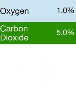 Gasco 391 Multi-Gas Mix: 5.0% Carbon Dioxide, 1.0% Oxygen, Balance Nitrogen