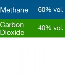 Gasco 399M Multi-Gas Mix: 60% Volume Methane, 40% Volume Carbon Dioxide