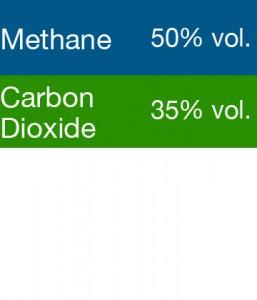 Gasco 399 Multi-Gas Mix: 50% Volume Methane, 35% Volume Carbon Dioxide, Balance Nitrogen