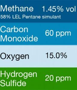 Bump Test Gas: Gasco 428.2 Multi-Gas Mix: 60 PPM Carbon Monoxide, 1.45% Vol. = (58% LEL) Pentane simulant, 15.0% Oxygen, 20 PPM Hydrogen Sulfide, Balance Nitrogen