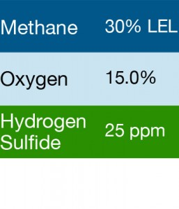 Bump Test Gas: Gasco 430 Multi-Gas Mix: 30% LEL Methane, 15.0% Oxygen, 25 PPM Hydrogen Sulfide, Balance Nitrogen