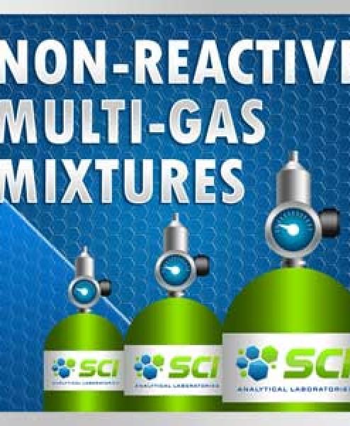 Non-Reactive Multi-Gas Mixtures