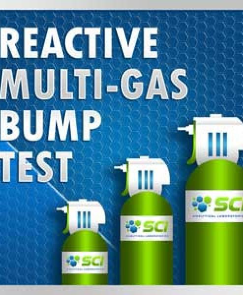 Reactive Bump Test Multi-Gas Mixtures